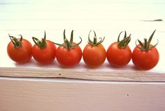Summer harvest. Red cherry tomatoes on an outdoor bench stock photography