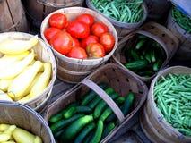 Summer Harvest Stock Photography
