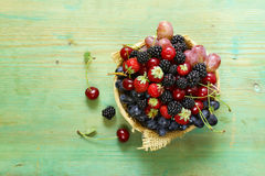 Summer harvest of berries Stock Images