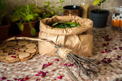 Summer harvest. Broom with burned runes on it and the paper bag full of leaves of ivan tea Royalty Free Stock Images