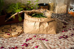 Summer harvest. Broom with burned runes on it and the paper bag full of leaves of ivan tea Stock Photo