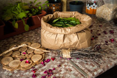 Summer harvest. Broom with burned runes on it and the paper bag full of leaves of ivan tea Stock Image