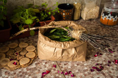 Summer harvest. Broom with burned runes on it and the paper bag full of leaves of ivan tea Royalty Free Stock Photos