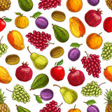 Summer harvest fruits seamless pattern. Vector decoration background element with garden and farm ripe fruit pattern of plum, mango, orange, pomegranate, kiwi Stock Photos