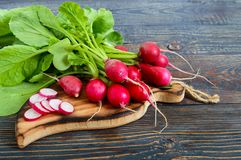 Summer harvested red radish. Growing organic vegetables. Large bunch of raw fresh juicy garden radish on dark boards ready to eat Royalty Free Stock Photos