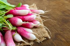 Summer harvested red radish. Growing organic vegetables. Large bunch of raw fresh juicy garden radish on wooden background ready to eat. Closeup Stock Photos