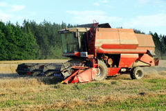 Summer harvesting. Of corn in the Czech republic Royalty Free Stock Image