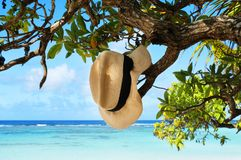 Summer Hat Hanging on Tropical Beach Stock Image