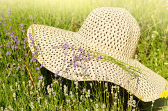 Summer hat over lavender flowers against  sunlight Royalty Free Stock Photos
