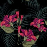 Summer Hawaiian seamless pattern with hibiscus flowers and palm leaves. Exotic botanical wallpaper, Hawaiian style. Dark backdrop Vector Illustration