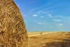 Summer hay field Stock Photo