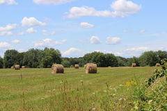 Summer Hayfield. A hayfield in Massachusetts with hay bales drying in the sun on a hot day in August Royalty Free Stock Photography