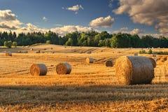 Summer haystacks 2 Stock Photography