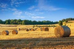 Summer haystacks 4. Haystacks on the field. Summer, rural landscape Royalty Free Stock Images