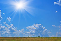 Summer heat. Summer sunny hot landscape with cloudy sky Stock Photography