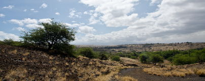 Summer heat on hills near Hapuna beach Royalty Free Stock Photography