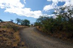 Summer heat on hills near Hapuna beach, Big Island, Hawaii Royalty Free Stock Photos