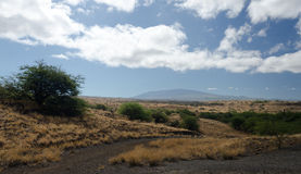 Summer heat on hills near Hapuna beach, Big Island, Hawaii Royalty Free Stock Image