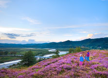 Summer heather flower hill and family on hill top Stock Images