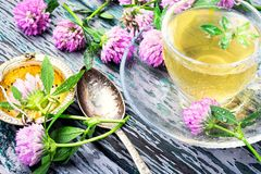 Summer herbal tea with clover. Cup of herbal tea made of wild clover.Herbal tea Stock Photography