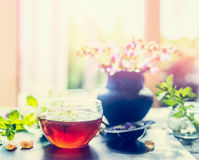 Summer herbal tea with fresh herbs on window sill. Stock Images