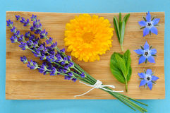 Summer herbs and edible flowers on wooden plate. Stock Images