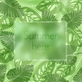 The summer here lettering in a frame on the background of fresh tropic green leaves poster. Modern Exotic banner. Stock Photos