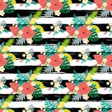 Summer hibiscus seamless patterns on striped black lines tropical flowers exotic fruits background. Seamless floral pattern with tropical flowers on black royalty free illustration