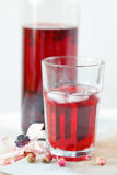 Summer hibiscus tea Stock Images