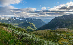 Summer in highland valley of Norway Royalty Free Stock Image