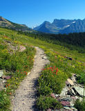 Summer on the Highline. Glacier National Park, Montana Royalty Free Stock Image
