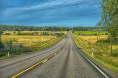 Summer Highway, Yellow Fields With Trees On The Sides Of The Road Stock Photos