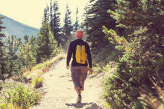Summer hike Royalty Free Stock Photography