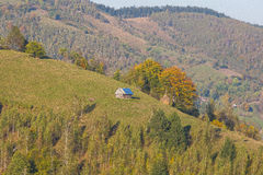 Summer hike in the hills of Transylvania Stock Images