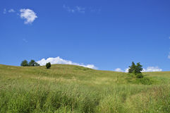 Summer Hillside. A grassy hillside on a nice Summer day in northern New Jersey Stock Photography