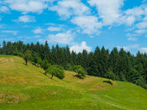 Summer hilly landscape Stock Photo