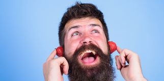 Summer hit concept. Man bearded hipster red ripe strawberry ears as headphones. Guy enjoy juicy sound summer hit song. Music. Hipster beard listen music Stock Photography