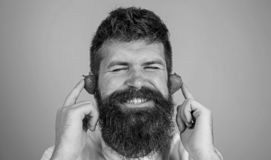 Summer hit concept. Man bearded hipster red ripe strawberry ears as headphones. Hipster beard listen music strawberry royalty free stock image