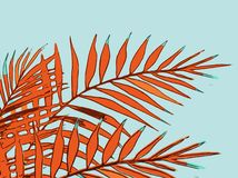 Summer holiday of an abstract background with palm leaves vector illustration