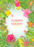 Summer holiday background with exotic flowers Stock Image