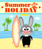 Summer holiday background with rabbit Stock Image
