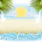 Summer holiday background. Seaside summer holiday background with palm and sunrise Royalty Free Stock Photo