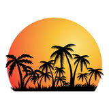 Summer holiday background.Tropical banner. Royalty Free Stock Photos
