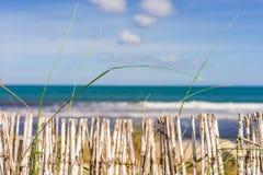 Summer holiday at sand dunes coast beach stock image