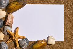 Summer holiday beach concept with shells Royalty Free Stock Photos