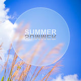 Summer holiday concept Stock Photo