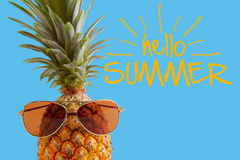 Summer and Holiday concept.Hipster Pineapple Fashion Accessories Royalty Free Stock Photo