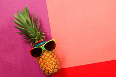 Summer and Holiday concept.Hipster Pineapple Fashion Accessories Stock Photo