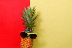 Summer and Holiday concept.Hipster Pineapple Fashion Accessories Stock Photos