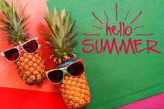 Summer and Holiday concept.Hipster Pineapple Fashion Accessories Stock Image
